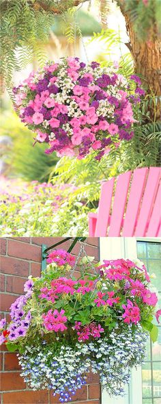 How to plant beautiful hanging baskets that last for months. Choose the best plants from these 15 designer plant lists for hanging flower baskets in sun or shade, plus easy care tips on soil, water and fertilizer for a healthy hanging basket! Hanging Plants Outdoor, Plants For Hanging Baskets, Patio Plants, Hanging Flowers, Cool Plants, Diy Flowers, Hanging Gardens, Plants Indoor, House Plants