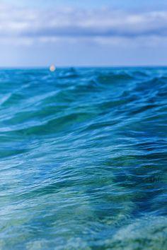 "ponderation: ""Ocean Blues by Shane Bain """