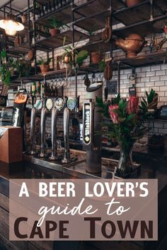 South Africa may be known for its rich wine culture, but the country also boasts a thriving craft and traditional beer scene. Ready to quench your thirst? Check out my beer lover's guide to Cape Town Boston Brewery, Find Your Spirit Animal, Cape Town South Africa, Tap Room, Koh Tao, Best Beer, Beer Lovers, Africa Travel, Culture Travel
