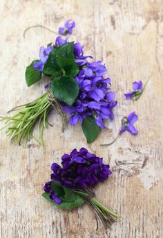 Violets made into little posies.