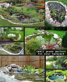 Small ponds turning your backyard landscaping into tranquil retreats