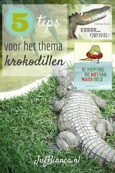 5 tips voor het thema krokodillen - JufBianca.nl