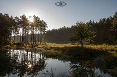 Pond in autumn by Przemysław Reinfus