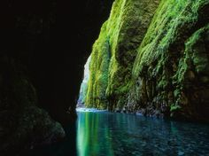 Portland, Oregon: Great Day Trips for Nature-Lovers - Photos