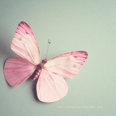she daydreams in pink by SusannahT on Flickr.