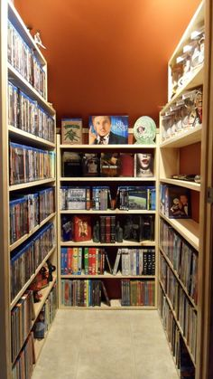 dvd storage closet-- I want one of these in my dream house.  It would be off of my home theater but it would look a little fancier than this one ;)