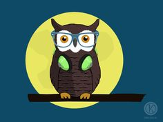 Owl Kryczek.pl