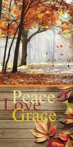 Thanksgiving Iphone Wallpaper, Church Banners, Peace And Love, Fall, Autumn, Prints, Business Quotes, Painting