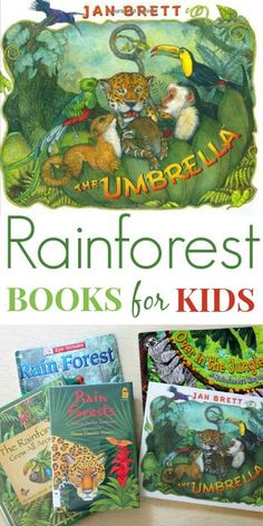 Rainforest Books for Kids -- this selection is especially good for younger kids, focusing on the amazing plants and animals in the rainforests and not so much on destruction.