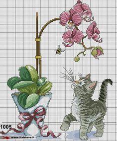 Kačiukas prie gėlės