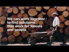 FSC facilitates the development of standards, ensures monitoring of certified operations and protects the FSC trademark so consumers can choose products that come from well managed forests.  El FSC facilita el desarrollo de estándares, garantiza el monitoreo de operaciones forestales y protege la marca registrada FSC para que los consumidores puedan optar por productos que provienen de bosques bien manejados.