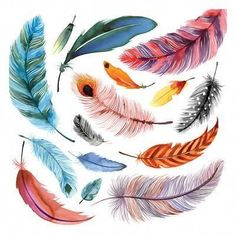 Falling Feathers I Watercolor Feather, Feather Painting, Feather Art, Watercolor Paintings, Fish Art, Watercolor Illustration, Collage Art, Bunt, Flower Art