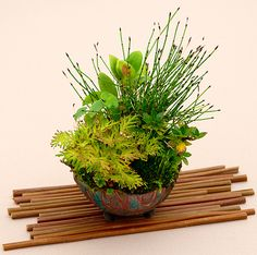 Kusamono a Japanese term for a type of accent plantings or companion plantings. The term literally means grass object, and often consists of a grass or flowering plant. The primary goal of the accent planting is to reflect the season depicted in a formal display