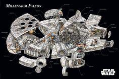 Poster: Star Wars - millennium falcon cross-section zum Verkauf online. Bestellen Sie Ihre Poster, Ihre 3D Film-Poster oder ähnliches interessantes Maxi Poster