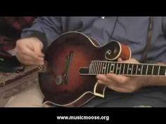YouTube mandolin lessons galore!
