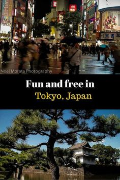 Fun and free in Tokyo, Japan - fantastic free attractions to visit and enjoy in Tokyo which is a very expensive city. Check out these landmarks, attractions and places in Tokyo that are all free or inexpensive to visit http://travelphotodiscovery.com/20-free-things-to-do-in-tokyo/