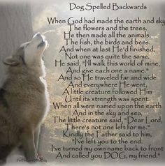 Beautiful poem about dogs!  I just love this ;)
