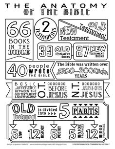 Creative Sunday School Crafts: Anatomy of the Bible Coloring Page. Bible Activities For Kids, Bible Study For Kids, Bible Lessons For Kids, Family Bible Study, Sunday School Lessons, Sunday School Crafts, Bible School Crafts, Kids Bible Crafts, Sunday School Teacher