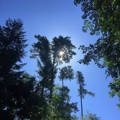 Another beautiful blue sky day here on the west coast! #skies #summer #getoutside #activeliving #westcoastliving