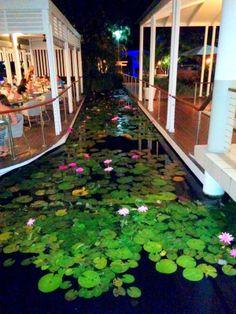 In built moat dividing restaurant and bar @ QT, Port Douglas, Australia.  http://www.qtportdouglas.com.au/