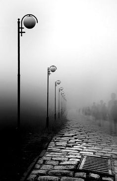 Lovely black and white photo of lamps and walkway in the fog