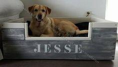 Bekijk de foto van YamBee met als titel Steigerhouten hondenmand model Sanny in duokleur. YamBee-Meubelen een diversiteit aan steigerhout en massief houten meubelen en andere inspirerende plaatjes op Welke.nl.
