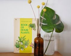 Vintage Book of House Plants