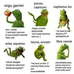 I'm not really like the Aquarius one :// sternzeichen verseau vierge zodiaque Zodiac Sign Traits, Zodiac Signs Astrology, Zodiac Horoscope, My Zodiac Sign, Horoscope Memes, Horoscopes, Anime Horoscope, Zodiac Cusp, Astrology Houses