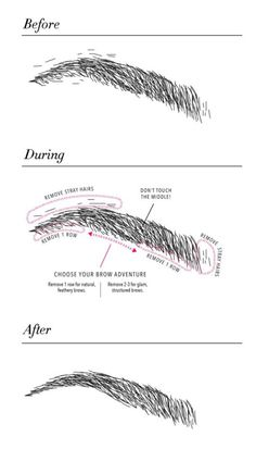 how to shape your eyebrows yoursefl