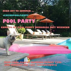 #Repost @lulunasty  Help me kick off Summer this weekend with Lulu's pool Party !!  #luluspoolparty  For every post tagged #luluspoolparty this Friday the 27-Monday the 30th I will donate $1 a post to @chicagofrenchbulldogrescue and to @roadogs up to $350 each !! So let's get your swimwear on and let's party! Show me how you are celebrating this weekend ! let's raise some money for two great rescues and have some fun!!! - the Lu  #letsgo #poolparty #fun #memorialday #memorialdayweekend by…