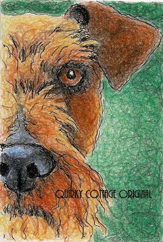 Items similar to Irish Terrier Original Dog Drawing in Colored Pencil and Ink on Etsy Irish Terrier, Airedale Terrier, Terrier Dogs, Terriers, Cute Dog Pictures, Dog Photos, Scottish Deerhound, Irish Wolfhound, West Highland Terrier