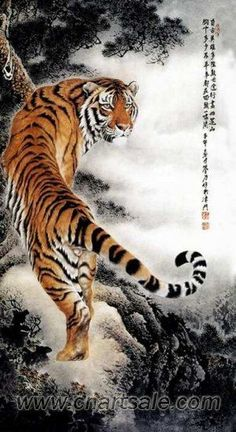 Chinese Tiger Painting AP029: