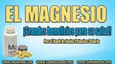 El Magnesio y la Salud  por el Roeh Dr. Javier Palacios Celorio - Kehila...