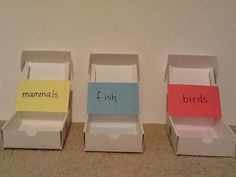 Tip: Sorting Bins- Grab 3-6 plastic bins or buckets (you can even use shoeboxes). Label each bin with a category related to what you are studying (e.g. nouns, verbs, prepositions; invertebrates, vertebrates; high fat, low fat, no fat; red, yellow, orange; democracy, oligarchy, dictatorship; items in a store, bank, post office etc.) Create cards with examples for the categories (e.g. house, car, run, to etc. for the categories nouns, verbs, prepositions or United States, Iran, China etc…