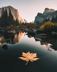 """Fall in Yosemite is a beautiful thing . - ""Fall in Yosemite is a beautiful thing . Yosemite National Park, Yosemite Park, Adventure Is Out There, Amazing Nature, Belle Photo, Beautiful Landscapes, Beautiful Landscape Photography, Beautiful Places, Beautiful Pictures"