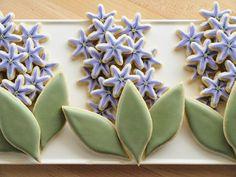 Hyacinth20