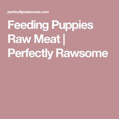 Feline nutrition recipe calculator metric cats pinterest cat feeding puppies raw meat perfectly rawsome forumfinder Choice Image