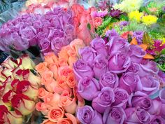 Roses, Roses, Roses for bouquets and more at #Louisville Costco - 16.99 for TWO dozen. Gorgeous!