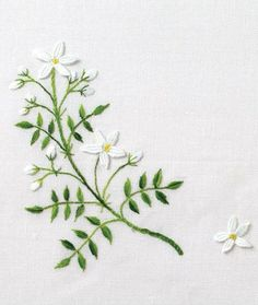 botany as an object of embroidery