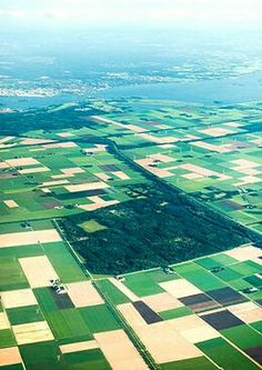 Flevopolder : lots of farmland