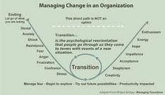 Image result for bridges model of change