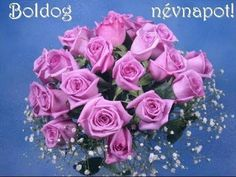 BOLDOG NÉVNAPOT! - YouTube Floral Wreath, Make It Yourself, Create, Rose, Spring, Artist, Flowers, Google, Happy