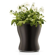 Glass Flower Pot Black Large, $68, now featured on Fab.