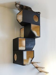 Cats Toys Ideas - Awesome cat house for the crazy cat person in all of us :-) - Ideal toys for small cats Pet Furniture, Furniture Plans, Modern Cat Furniture, Furniture Online, Wooden Furniture, Ideal Toys, Cat Shelves, Cat Climbing, Cat Room