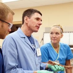 Do you need to do pre-med to get into med school?