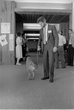"""Bert Wahl takes his panther on a walk at the """"Survival of the Florida Panther"""" conference in Tallahassee (1986). 