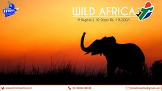 Africa, Night, Day, Creative, Movies, Movie Posters, Films, Film Poster, Cinema