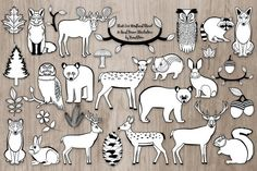 Black and White Woodland Illustrations. #blacklineanimals #animalillustration #blackandwhiteanimals #animaloutlines #coloringbookanimals #animalclipart #woodlandclipart #forestillustration