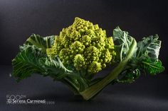 Pic: Small Romanesco cauliflower with leaves