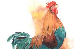 Rooster painting watercolor R074 BIRD print of by LouiseDeMasi